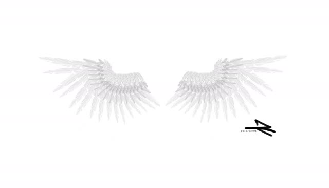 Watch and share Wings GIFs on Gfycat