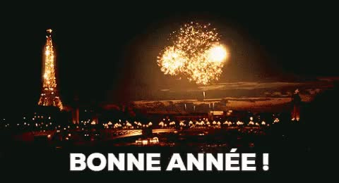 Watch and share BONNE ANNÉE GIFs on Gfycat