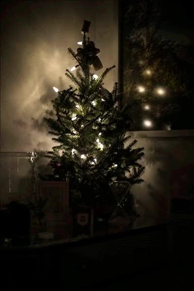 Watch and share Led Christmas Tree Lights Gif | Flashing Lights | 23rd Studios Boulder GIFs on Gfycat
