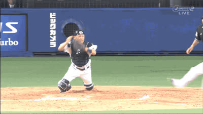 baseballgifs, 111 GIFs