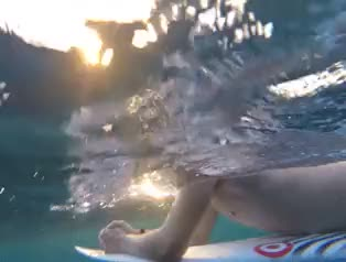 Watch and share Underwater GIFs and Gopro Gif GIFs on Gfycat