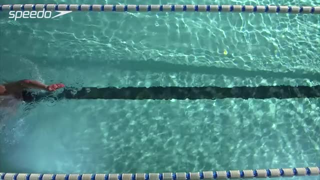 Watch and share Swimming Pool GIFs and Blueseventy GIFs on Gfycat