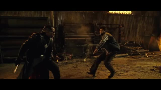 Watch Blade Trilogy GIF on Gfycat. Discover more blade, blade vs dracula, blade vs frost, blade vs nomak, fight scene, marvel, superhero, sword, vampire, wesley snipes GIFs on Gfycat