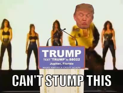 donald trump, Donald Trump Saying,