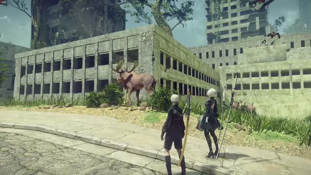 Watch and share Nier GIFs by secopree on Gfycat