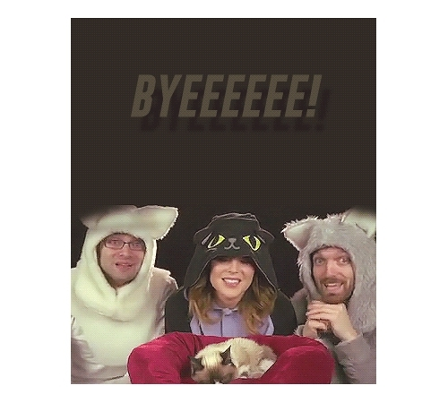 Grace helbig, cause its the byeeeeeeee, dailygrace, gracehelbig, grumpy cat, grumpygrace, itsgrace, large gif, thefinebros, this is pretty nasty quality but the bit in the video was tiny but I didn't not want to use it, Hello nostalgia GIFs