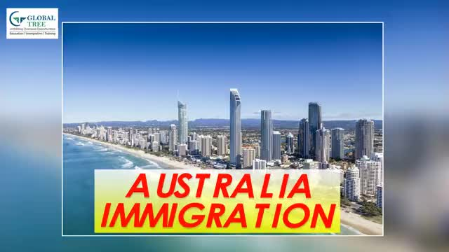 Watch and share Australia Immigration Consultants In India - Global Tree. GIFs by Study Abroad & Immigration on Gfycat
