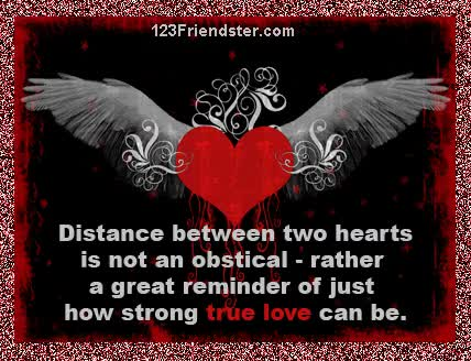 Watch and share True Love GIFs on Gfycat
