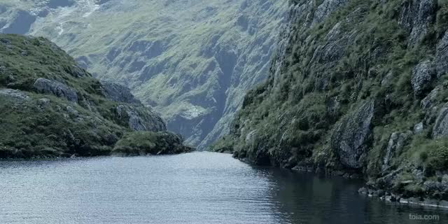 Watch this nature GIF on Gfycat. Discover more earthporngifs, nature, naturegifs, sfw_wtf, taga, tagb GIFs on Gfycat