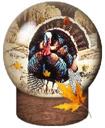 "Watch and share ""animated-turkey-image-0050"" animated stickers on Gfycat"