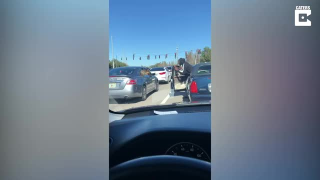 Watch and share Man Lets Dog Pet Puppy In Traffic GIFs by GIFs For Everything on Gfycat