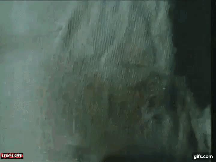 Mick Lethal, aliensamongus, gory, horror, monster, movie, parasite, scifi' gross, Alien Parasite! GIFs