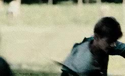 Watch THG-TWD-Glee-Spartacus-Divergente-WTGDS GIF on Gfycat. Discover more correr o morir, dylan o'brien, isaac newton, newt, the maze runner, thomas, thomas brodie-sangster, thomas edison GIFs on Gfycat