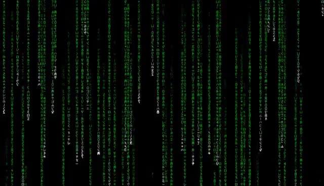Watch and share 1 Hour Matrix Rain Code GIFs on Gfycat