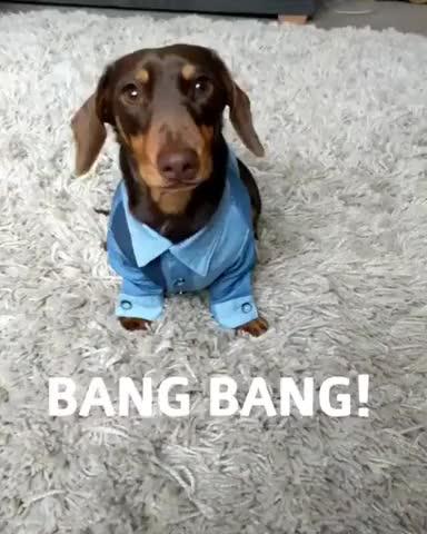 Watch Bang bang! GIF by Pierre LeBaux (@lebaux) on Gfycat. Discover more Chris_Isur_Dude GIFs on Gfycat
