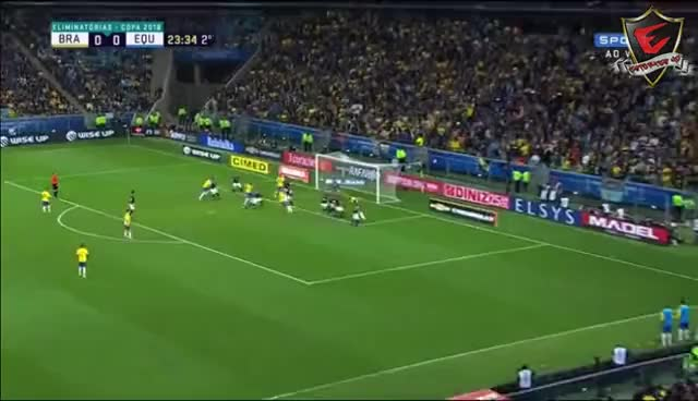 Watch and share Gol De Paulinho Brasil 1 X 0 Equador Eliminatórias Da Copa Mundo 2018 GIFs on Gfycat