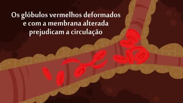Watch and share Hemoglobina GIFs and Falciforme GIFs on Gfycat