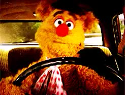 Watch and share The Muppet Movie GIFs and Muppetsedit GIFs on Gfycat