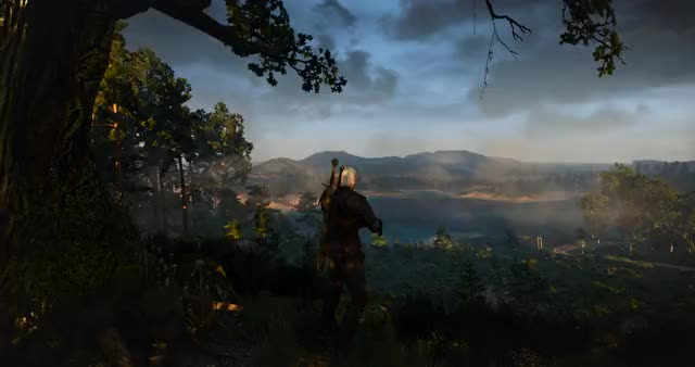 Watch and share The Witcher 3 Screenshot 2019.05.19 - 07.12.59.56 GIFs on Gfycat