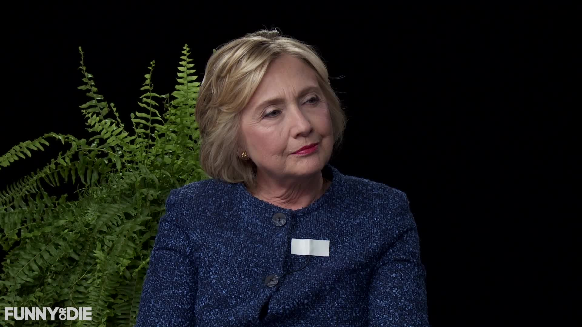 between two ferns, between2ferns, betweentwoferns, fod, funny or die, hillary clinton, hillaryclinton, zach galifianakis, I Don't Think So - Between Two Ferns with Hillary Clinton GIFs