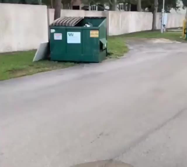 Watch and share Garbage GIFs and Trash GIFs by drjsfro on Gfycat