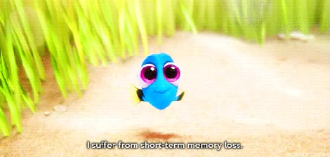 Watch and share Baby Dory.gif GIFs on Gfycat