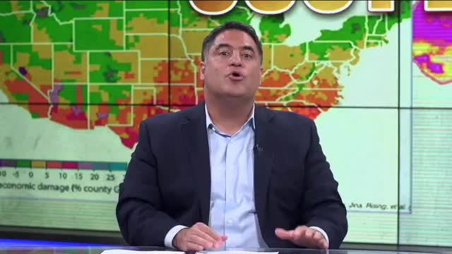 Watch this trending GIF on Gfycat. Discover more cenk uygur GIFs on Gfycat