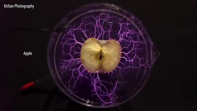 Watch Cool Experiments: High-Voltage Experiments GIF by GIFs For Everything (@jiffiergifss) on Gfycat. Discover more beauty of science, electric arc, electric spark, electrical experiments, electrical science, high-voltage experiments, kirlian photography, lichtenberg figures, physics GIFs on Gfycat