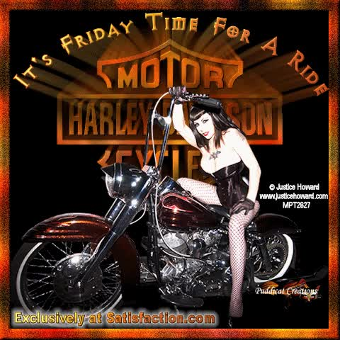 Watch and share Harley GIFs on Gfycat