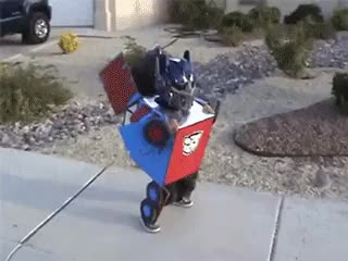 Watch bba autobots roll out autobots roll out GIF on Gfycat. Discover more related GIFs on Gfycat