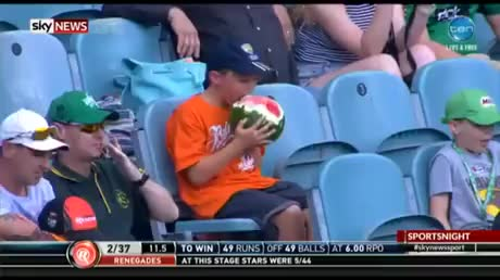 Kid eats a whole watermelon at a cricket match