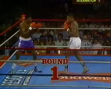 Watch www.SugarBoxing.com Mike Tyson feints left jab to throw right hand GIF by sugarboxing on Gfycat. Discover more related GIFs on Gfycat