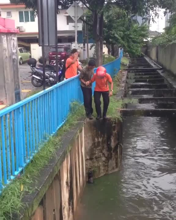 Two guys working together to rescue a cat that got trapped in a canal GIFs
