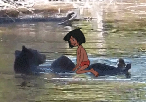 bear, mowgli, the jungle book, Bare necessities. GIFs