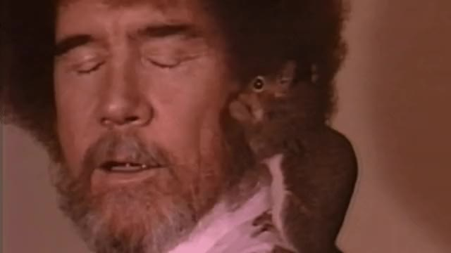 Watch and share Squirrels GIFs and Bob Ross GIFs by tijnlijn on Gfycat
