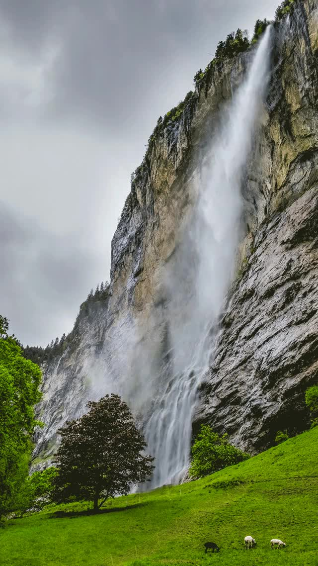 Watch Switzerland GIF on Gfycat. Discover more related GIFs on Gfycat