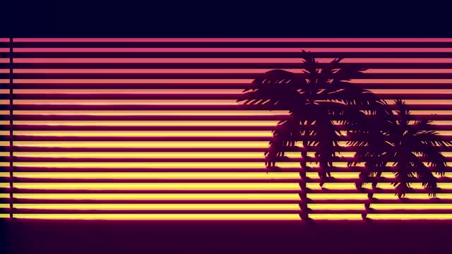Watch and share Miami Sunset GIFs on Gfycat