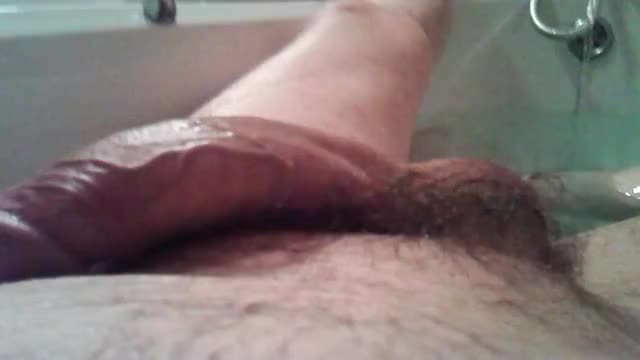 cock#prebushwarmer#hearty-bathtime