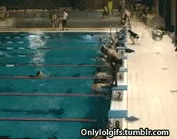 Watch and share Swim Meet GIFs and Swimming GIFs on Gfycat