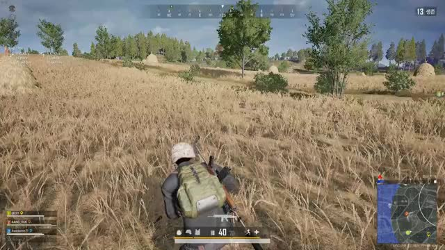Watch and share Pubg GIFs by rkdcksdnr1 on Gfycat