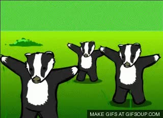 Watch and share Nope Badger GIFs on Gfycat