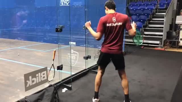 Watch and share THIS IS SQUASH - Grasshopper Cup GIFs on Gfycat