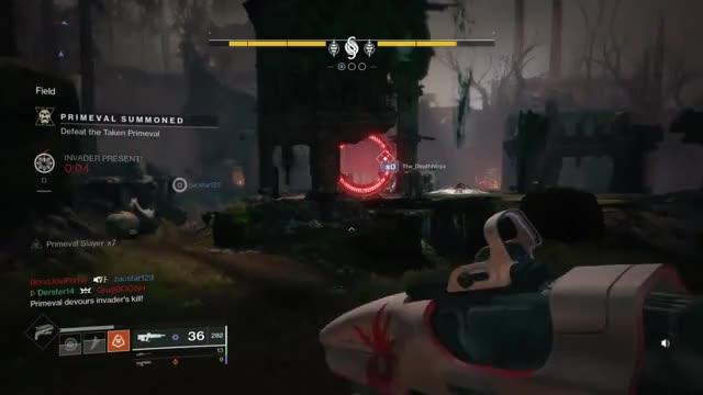 Roseglennorthdakota / Try These Gambit Destiny 2 Reddit