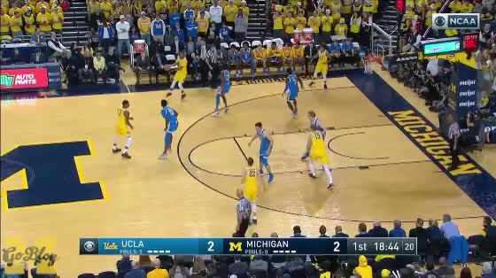 Watch and share John Beilein GIFs and Basketball GIFs by Ace Anbender on Gfycat