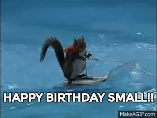 Watch and share Twiggy The Water Skiing Squirrel GIFs on Gfycat