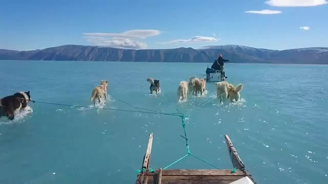 Watch and share Northwest Greenland GIFs and Inglefield Fjord GIFs by 5frogmargin on Gfycat