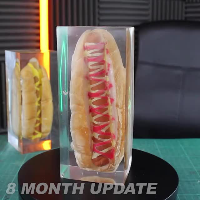 Watch and share 8 Month Epoxy Hot Dog Update GIFs by Whathowwhy on Gfycat