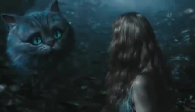 Watch and share Cheshire GIFs and Cat GIFs on Gfycat