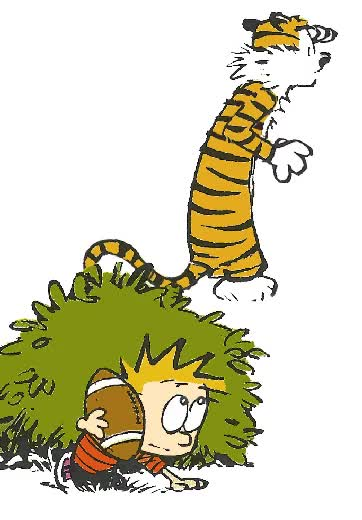 Watch and share GIFS ANIMADOS DE CALVIN AND HOBBES GIFs on Gfycat