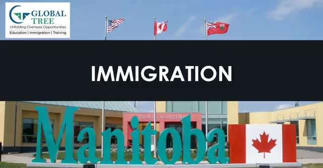 Watch and share Manitoba PNP Immigration Consultants - Global Tree GIFs by Study Abroad & Immigration on Gfycat